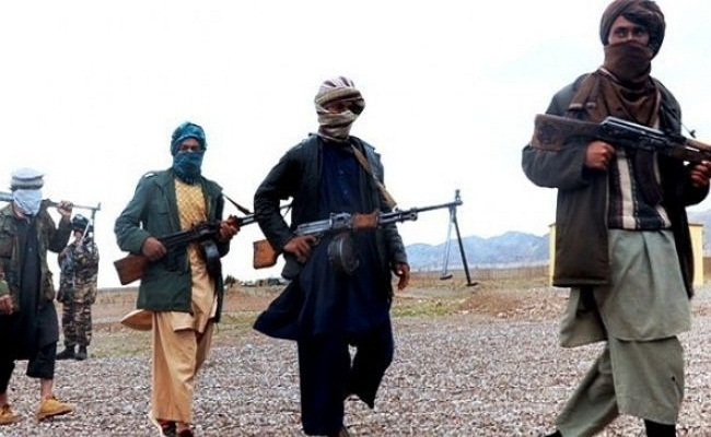 24 Taliban militants killed in Afghanistan