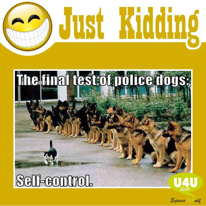 Just Kidding!!!