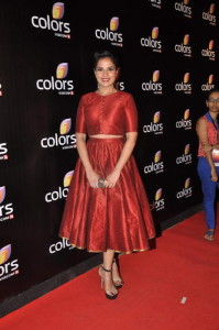 Mumbai Colors Channel party  (5)