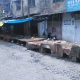 AIIMS Coordination committee inspires a complete bandh in Jammu City