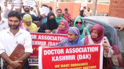 Doctors hold protest rally in Kashmir