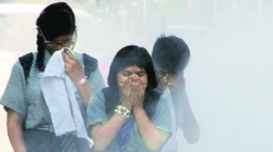 Air pollution increases asthma risk in babies