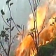 After Himachal, Uttarakhand, Massive forest Fires in J-K